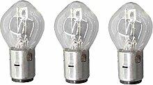 AISEN 3 STÜCK 12V 35/35W BA20D S2 BIRNE LAMPE