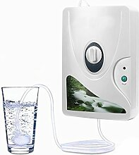 Ajusen Ozon Wasser und Luftreiniger Reiniger
