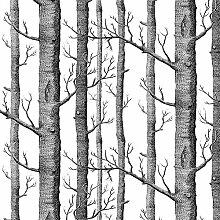 Akea Moderne Birke Baum Tapete Rolle Schwarz-Weiß