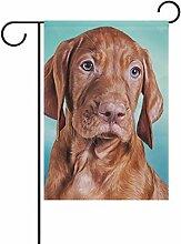 ALAZA Magyar Vizsla Brown Dog Dekorative Double