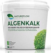 Algenkalk feinstes Pulver 100% rein für Buchsbaum