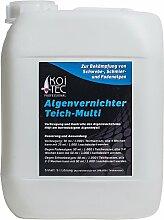 Algenvernichter (5 l) für kristallklares Wasser im Teich - gegen Fadenalgen Schwebealgen Schmieralgen, Algenentferner Fadenalgen-Stopp Algizid gegen Algen, fadenalgenfrei durch Fadenalgenvernichter Koiteich Gartenteich