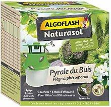 ALGOFLASH NATURASOL BIOPIBUI Buchsbaum-Pyrale