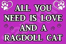 All You Need Wird Mit Aufschrift Love Und Ein Motiv Katze - Jumbo Magnet/Jubiläum