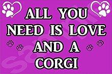 All You Need Wird Mit Aufschrift Love Und Einem Corgi Hund - Jumbo Magnet/Jubiläum