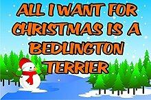alle I Want für Weihnachten ist ein Bedlington Terrier Kühlschrank-Magnet Geschenk / Geschenk Welpen / Hund
