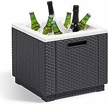 Allibert Ice Cube Kühler Ice Box