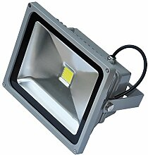 ALPHA DIMA 30W Kaltweiß LED Fluter Strahler Licht
