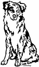 amberdog Australian Shepherd Art.Nr.AT0146