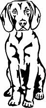 amberdog Bayerischer Gebirgsschweißhund