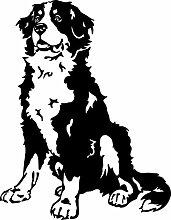 amberdog Berner Sennenhund Autoaufkleber
