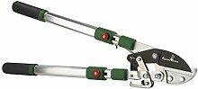 Amboss-Ast-Ratschenschere mit Teleskopgriff
