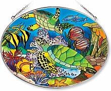 Amia ovaler Sonnenfänger mit Schildkröte und