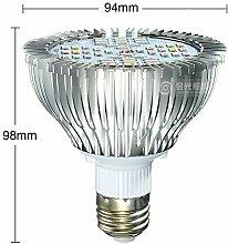 Amstt LED Pflanzenlicht E27 Fassung - 24W Pflanzenlampe Grow Lampe - Licht für Pflanzen Gewächshaus Beleuchtung - Pflanzenbeleuchtung Blumenlampe für Zimmerpflanzen, Blumen und Gemüse