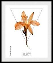 andas Bild Pflanze, mit Rahmen weiß