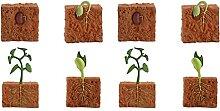 Angoily 2 Sets Lebenszyklus, Grün, Bohnenpflanze,