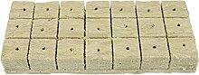 Angoily 20Pcs für Stecklinge Klonen Anlage