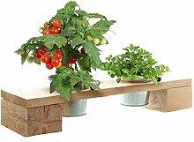 Annastore Pflanztreppen und Kräuterregale
