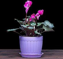 Anqeeso Kunststoff-Blumentopf, rund,