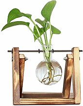 ANR Desktop Glas Pflanzer Glühbirne Vase mit