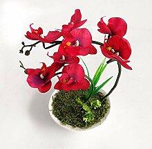 ANSODT Künstliche Blumen Orchidee Phalaenopsis
