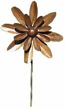 Antike Graffiti ag-87124Große Zinnia Blume Spinner dem Spiel–Mehrfarbig