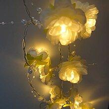 ANZOME LED Lichterkette, 2.4m 20LED Warmweiß