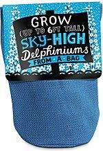 Anzucht-Set. Bag Plant Delphiniums. Für Blau Delphiniums pflegen. 20x 10cm.