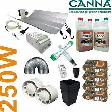 Anzucht-Set Coco Canna + Beleuchtung 250W