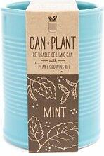 Anzucht-Set Minze. Mit eine erlesene anbauen. Can + Plant. Für Präsentation in eine Schüssel in Keramik mit Form von Luxusline