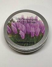 Anzuchtset: Lila Pampasgras (Cortaderia selloana) / 100 Samen / farbenfroher Blütenstand in violett/pink / originelle Geschenkidee z.Bsp. als Gastgeschenk oder Abschiedsgeschenk