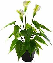 Aobear Künstliche Calla-Lilien, Kunstpflanze,