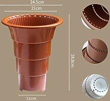 AOM Pflanze Blumentopf Garten Home Office Dekor