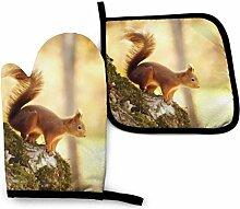 AOOEDM Niedliche kleine Eichhörnchen Ofen Mitt
