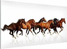 Apalis 108820 Magnettafel Pferdeherde Memoboard