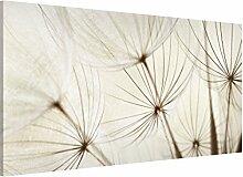 Apalis 108830 Magnettafel Sanfte Gräser Memoboard Design Quer Metall Magnet Pinnwand Motiv Wand Stahl Küche Büro, 37 x 78 cm