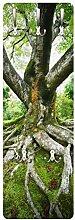 Apalis 78467 Wandgarderobe Alter Baum | Design Garderobe Garderobenpaneel Kleiderhaken Flurgarderobe Hakenleiste Holz Standgarderobe Hängegarderobe | 139x46cm