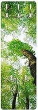 Apalis 78621 Wandgarderobe Bäume des Lebens |