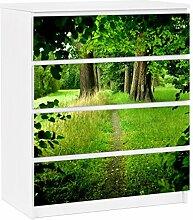 Apalis 91360 Möbelfolie für Ikea Malm Kommode - selbstklebende Verborgene Lichtung, größe 4 mal, 20 x 80 cm
