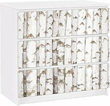 Apalis 91715 Möbelfolie für Ikea Malm Kommode nummer YK15 Birkenwand, größe 3 mal, 20 x 80 cm