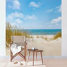 Apalis Fototapete Strand an der Nordsee