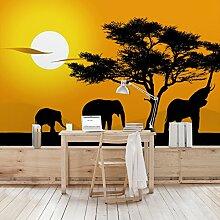 Apalis Vliestapete African Elefant Walk Fototapete