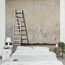 Apalis Vliestapete Blank Fototapete Quadrat | Vlies Tapete Wandtapete Wandbild Foto 3D Fototapete für Schlafzimmer Wohnzimmer Küche | Größe: 288x288 cm, beige, 97515