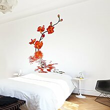 Apalis Vliestapete Blumentapete Flamy Orchid