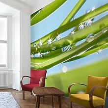 Apalis Vliestapete Blumentapete Fresh Green Fototapete Quadrat | Vlies Tapete Wandtapete Wandbild Foto 3D Fototapete für Schlafzimmer Wohnzimmer Küche | Größe: 288x288 cm, grün, 97671