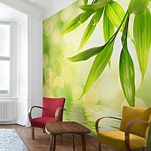 Apalis Vliestapete Blumentapete Green Ambiance I Fototapete Quadrat | Vlies Tapete Wandtapete Wandbild Foto 3D Fototapete für Schlafzimmer Wohnzimmer Küche | Größe: 192x192 cm, grün, 97717