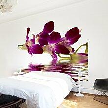 Apalis Vliestapete Blumentapete Pink Orchid Waters