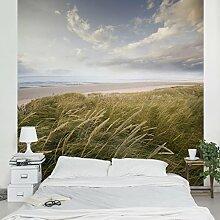 Apalis Vliestapete Dünentraum Fototapete Quadrat | Vlies Tapete Wandtapete Wandbild Foto 3D Fototapete für Schlafzimmer Wohnzimmer Küche | Größe: 288x288 cm, grün, 95314