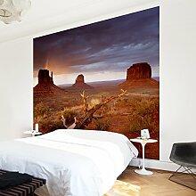 Apalis Vliestapete Monument Valley bei