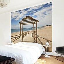 Apalis Vliestapete Strandpfad zum Meer in